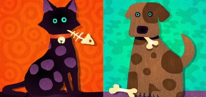 cats_vs_dogs